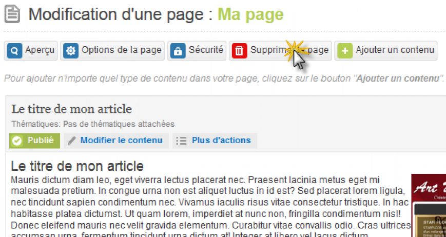 bouton.supprimer.page.png