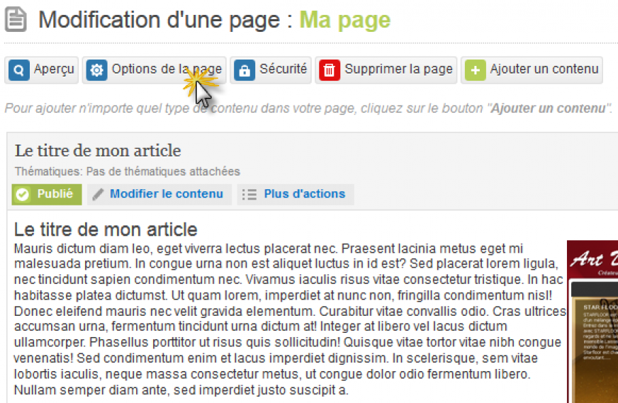 bouton.options.page.png