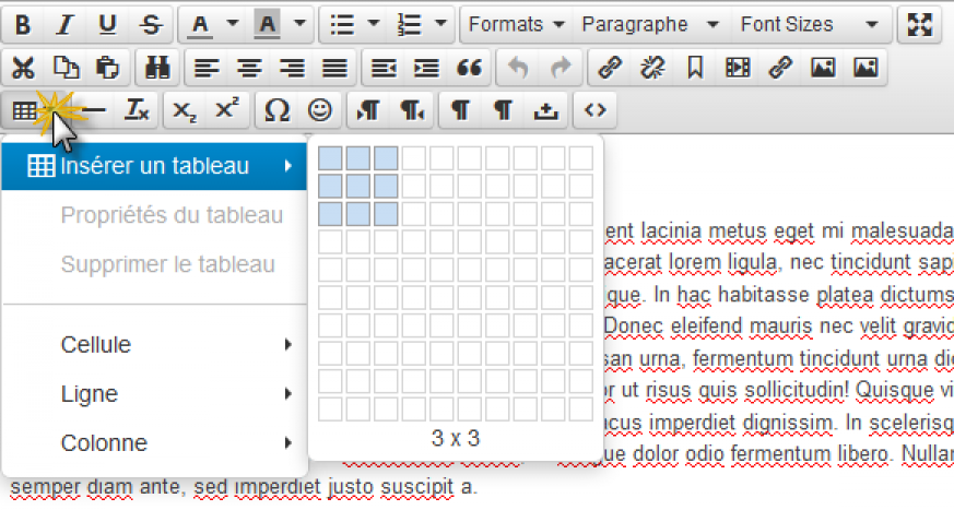bouton.wysiwyg.tableaux.png